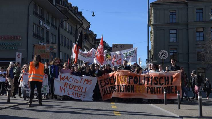 Umzug zum Bundesplatz: Tausende Demonstrierende gingen am Samstag in Bern für eine ökologische Landwirtschaft auf die Strasse.