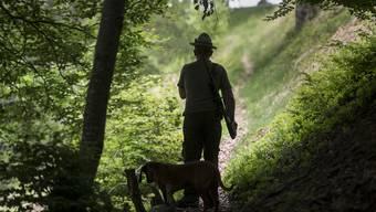 Die Jäger des Hegerings Leberberg hielten ihren jährlichen Hegeringtag ab. (Symbolbild)