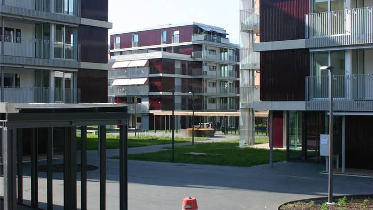 Kolonie Hofächer: Jede zweite Wohnung ist bereits vermietet. Foto: Aru