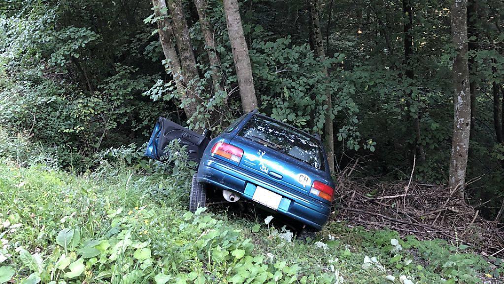 Das Auto kam von der Strasse ab, rollte eine Böschung hinunter und prallte in einen Baum. Der Lenker verstarb auf der Stelle.