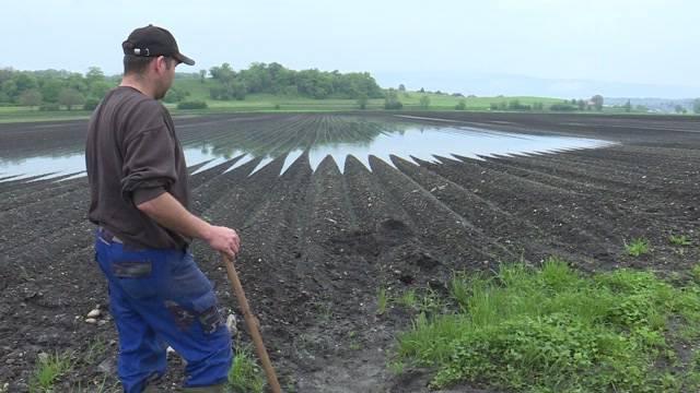 Bauern am Seeland