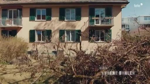 Baumanns: Abenteuer Wohneigentum – Folge 24