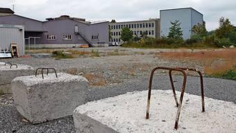 Hier soll eine temporäre Schule entstehen: Der Stadtrat wählt ein ausserordentliches Vorgehen.