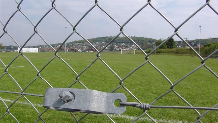 Der Gemeinderat plädiert erneut für einen Kunstrasen im Sürenloh.