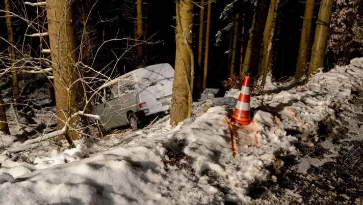Im Wald gelandet ist eine Lenkerin mit ihrem Kleinbus in Ennetmoos NW.