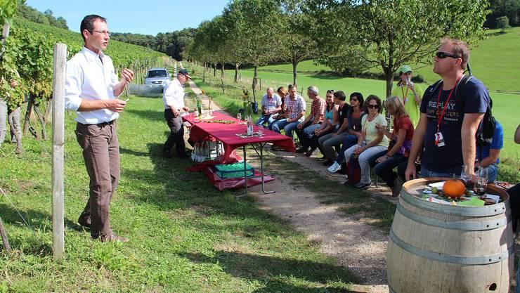 Weinwanderung im Jurapark von Effingen nach Bözen: Mit den finanziellen Mitteln der Neuen Regionalpolitik werden auch mehrere touristische Projekte im Aargau gefördert.