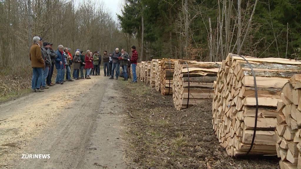 Mit viel Tradition: Brennholz-Versteigerung in Ellikon