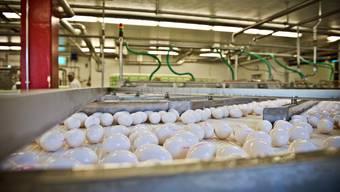 Zu Besuch bei Lüchinger+Schmid, dem grössten Schweizer Eierhändler
