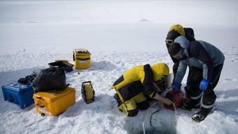 Durch ein Loch im dicken Packeis liessen australische Forscher ihren Tauchroboter in die Tiefe hinab.