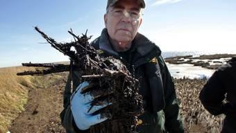 Robert Barham, Minister für Wildtiere und Fischerei hält einen Klumpen aus abgestorbenem Gras und Öl in der Hand