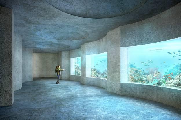 Laut Zolli soll das Ozeanium ein Vorbild für nachhaltiges Bauen und Energieeffizienz sein.