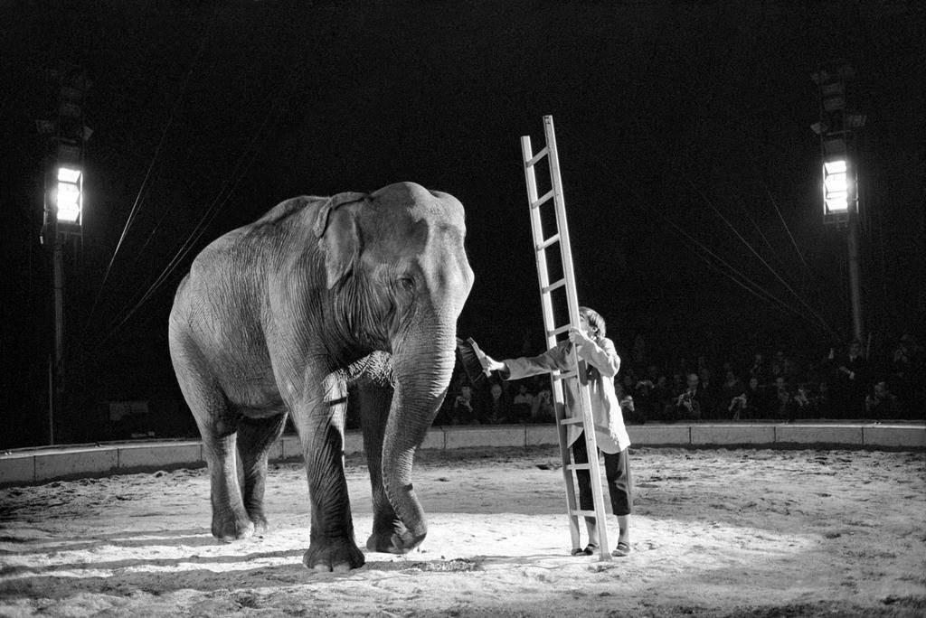 1970: Dimitri im Zirkus Knie in Rapperswil (© Keystone)