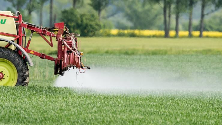 Pestizide belasten das Grundwasser. Die Schweiz und die EU wollen deren Einsatz deshalb weiter reduzieren.