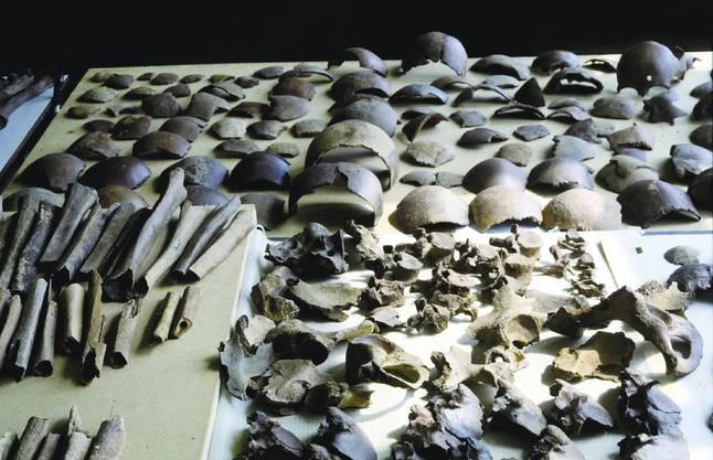Zahlreiche Knochenfunde in Kessel im Südosten der Niederlande weisen auf die Schlacht hin.