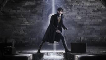 """Der Film """"Fantastic Beasts: The Crimes of Grindelwald"""" sorgte am Wochenende vom 16. bis 19. November 2018 an den nordamerikanischen Kinokassen für die meisten Billettverkäufe. (Archiv)"""