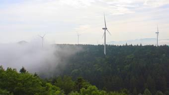 Kritisiert werden die geplanten Windparks an der Kantonsgrenze zwischen Basel und Solothurn.