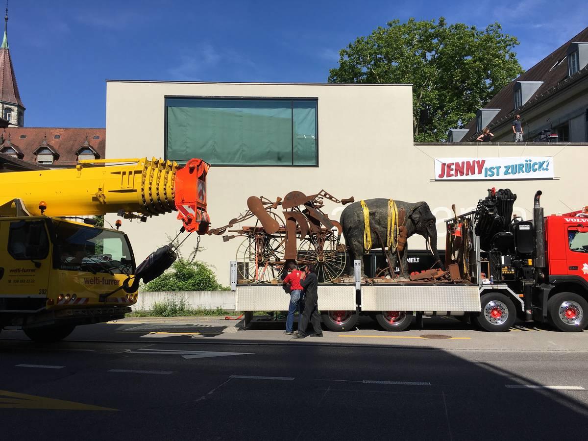 Elefantendame Jenny kehrt nach Aarau zurück (© Radio Argovia)