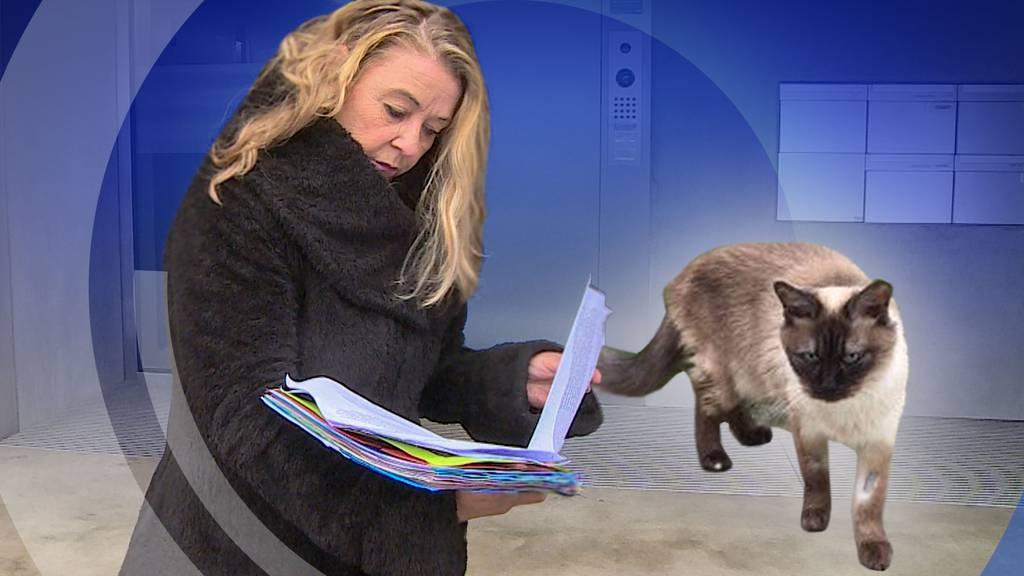 Astrid Becker soll eine Katze ohne Einverständnis vermittelt haben