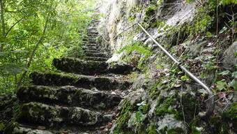 Aufstieg zur Burgruine in Balm bei Günsberg