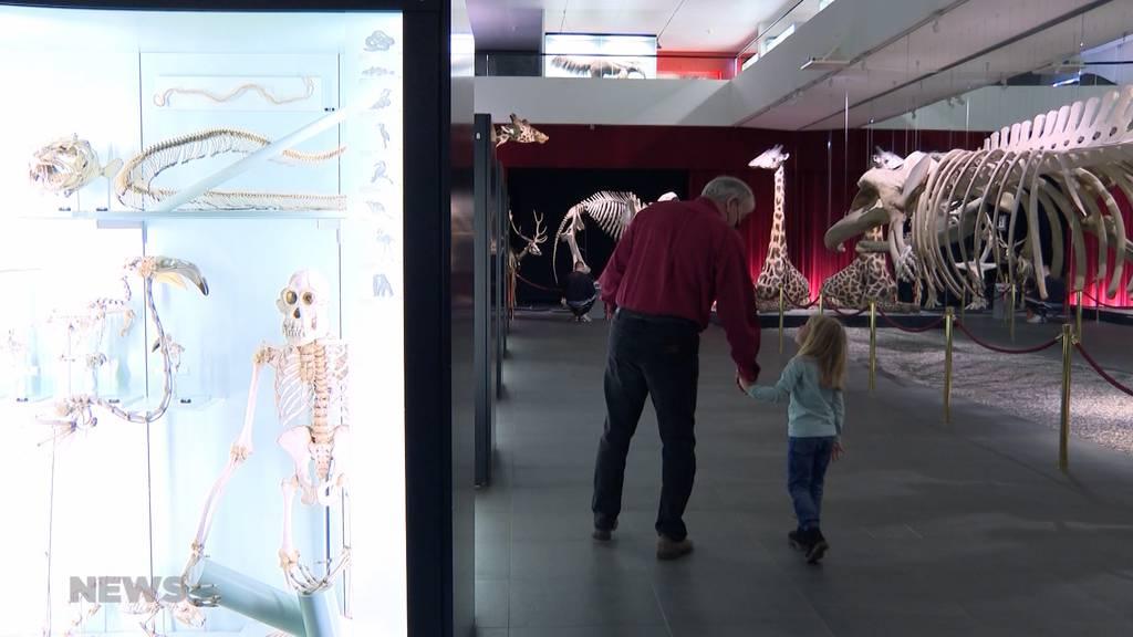 Museen-Boom dank Corona: Wie nachhaltig ist der Trend?