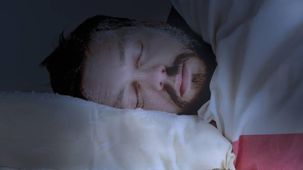 In Zukunft könnten auch Menschen Winterschlaf halten
