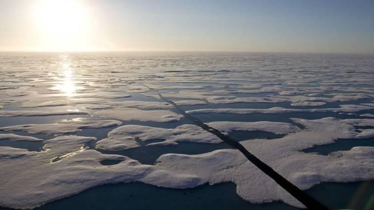 Eisschollen in der Nähe von Resolute Bay im hohen Norden Kanadas. Dort wollen Forscher herausfinden, von welchen Klimabedingungen die Quecksilber-Belastung von Seesaiblingen abhängt. (Archivbild)