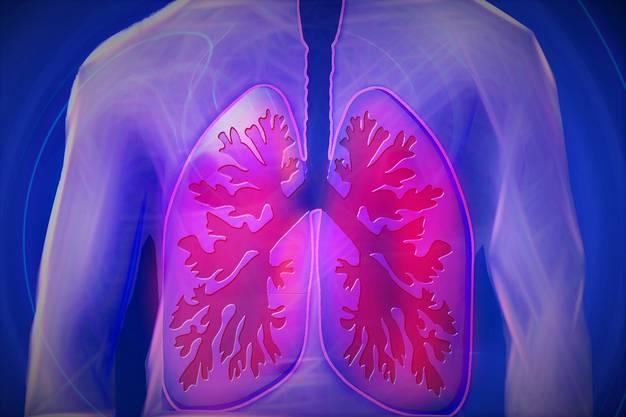 Gewicht einer durchschnittlichen Lunge: 1 Kilogramm. Anzahl Lungenbläschen: 300 Millionen. Oberfläche aller Lungenbläschen eines Menschen zusammen: 100 Quadratmeter. Gesamtvolumen Lunge: 6 Liter. Luft pro Atemzug: 0,5 Liter. Atemzüge pro Minute: 17. Atemzüge in einem 80-jährigen Leben: 714 Millionen. Luft, die ein Erwachsener pro Tag einatmet: 12'000 Liter. Davon sind reiner Sauerstoff: 600 Liter. Rekord im Luftanhalten: 11:35 Minuten. Sauerstoffproduktion eines grossen Baumes: 11'000 Liter pro Tag.