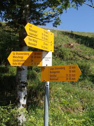 69 Wanderinnen und Wanderer starteten am Morgen in Ramiswil zur Königsetappe nach Aedermannsdorf. Auf dem Hof Bremgarten erwartete die Schar ein feines Stück Zopf und zertifizierter Süssmost.