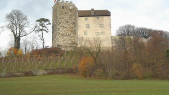 Der Fugenmörtel am Turm der Habsburg ist marode.