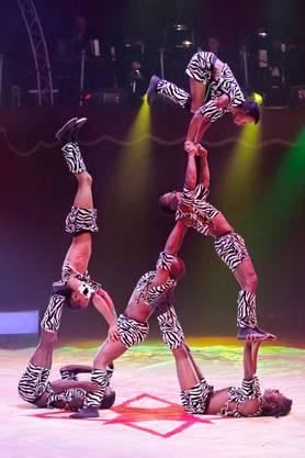 Hauptprobe des Circus Nock (Programm 2013)