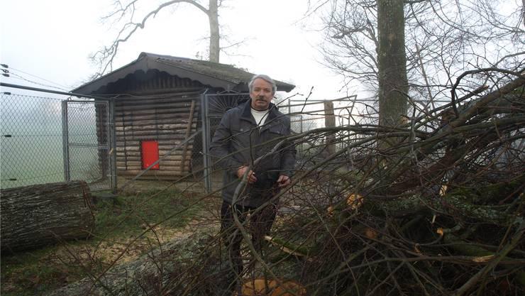 Kassier Rolf Sommer inmitten der Reste eines Baumes, der jüngst umgestürzt ist.