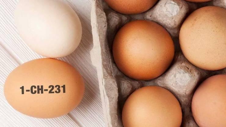 Könnten mit Salmonellen befallen sein: Rund 800 Eier mit dem aufgedruckten Code 1-CH-231.