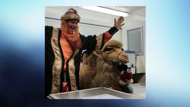 Solothurner Restaurant vermisst Kamel
