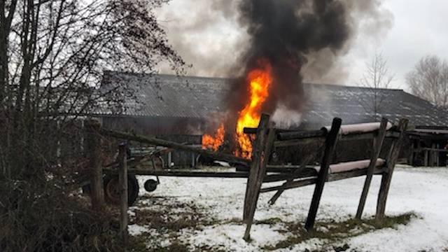Fahrzeuge brennen lichterloh bei Pferdepension