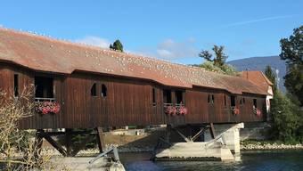 Der Geranienverkauf für die Holzbrücke hat gut funktioniert.