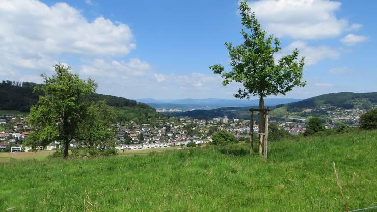 Einfach vom Altersheim Ebenezer der Blick auf das Dorf Frenkendorf, dann auch noch ein wenig rechts Füllinsdorf und im Hintergrund der Schwarzwald