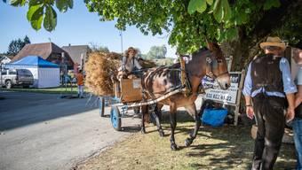 Dorffest Lüsslingen-Nennigkofen