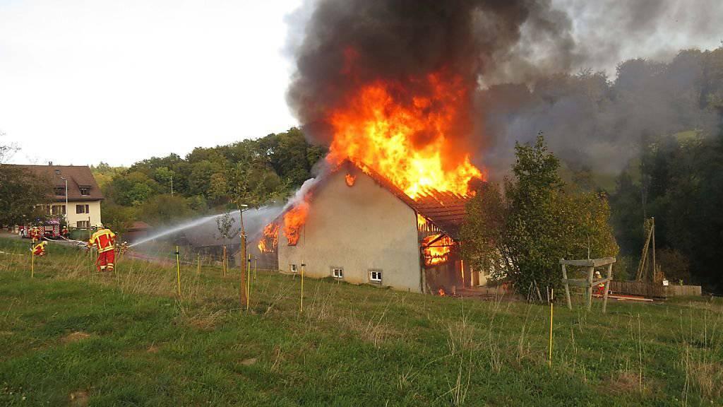 Trotz Grosseinsatz der Feuerwehr brannte das renovierte Bauernhaus vollständig nieder.