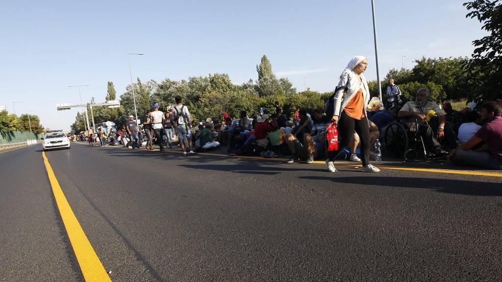 Flüchtlinge entlang der Autobahn Ungarns auf dem Weg Richtung Westen.