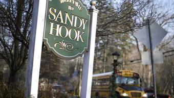 Der Amoklauf geschah an der Sandy Hook Elementary School (Archiv)