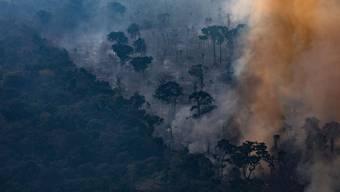 Der brennende Amazonas befeuert den Streit um das Freihandelsabkommen der Schweiz mit den Mercosur-Staaten.