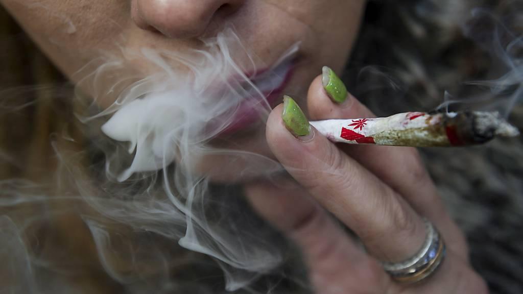 Cannabis laut Studie weniger rentabel als Kokain