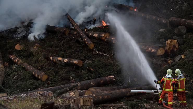 Wer unvorsichtig feuert, kann so etwas verursachen: Waldbrand bei Faido TI im April 2017. (Archiv)
