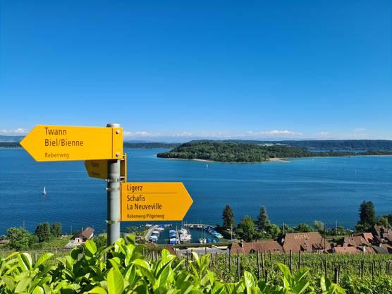 Auf dem Rebenweg entlang des Bielersees überschreitet man den Röstigraben. (Bild: Getty)