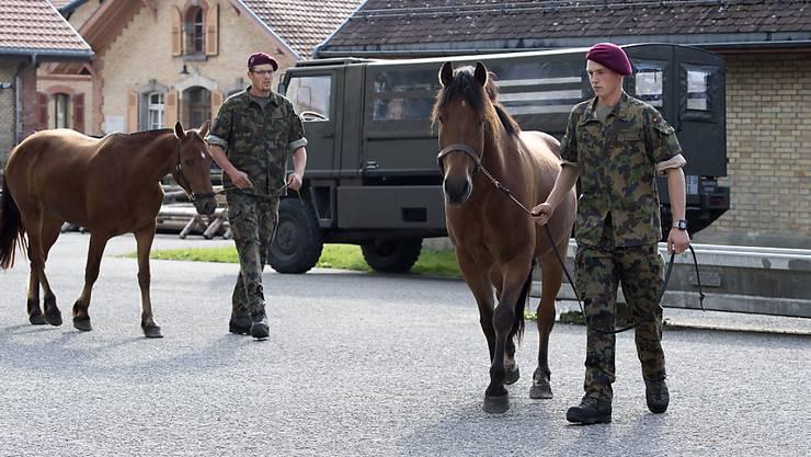 Acht Pferde des Armee-Tier-Kompetenzzentrums in Bern sind an Druse erkrankt, nachdem dort die Tiere des mutmasslichen Tierquälers aus Hefenhofen einquartiert waren. Ob die Thurgauer Tiere die Armeepferde ansteckten, ist aber nicht sicher. (Archiv)