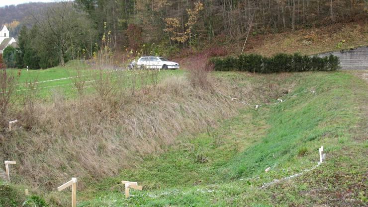 Ist (zu) dicht: Versickerungsmulde an der Ortsverbindungsstrasse Hornussen–Zeihen hält das gesammelte Wasser viel zu lange zurück. (chr)