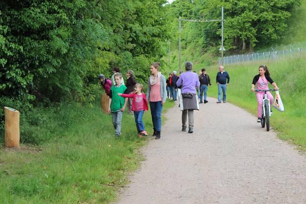 Der Waldlehrpfad liegt direkt am Rheinuferweg