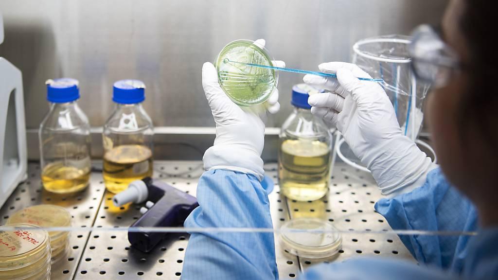 Eine Frau bei der Arbeit in einem Labor. (Symbolbild)
