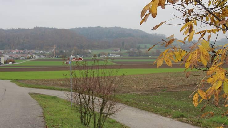 Othmarsingen will die Moderne Melioration als Gemeinschaftswerk anpacken.