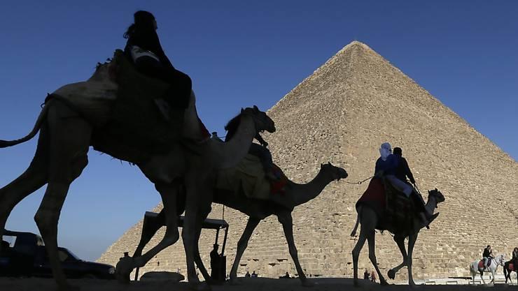Was für Ägypten-Touristen ein Traum, ist für die Tiere um die Pyramiden von Gizeh bei Kairo die Hölle.